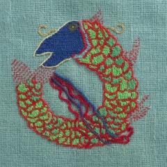 poisson dragon, photo Bertrand Sion