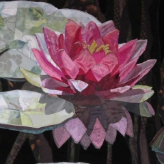 Mary Poppelier - Water Lily