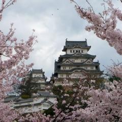 Himeji, Foto: J. Reichenbach