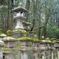 Nara Laternen Kasuga Taisha, Foto: J. Reichenbach